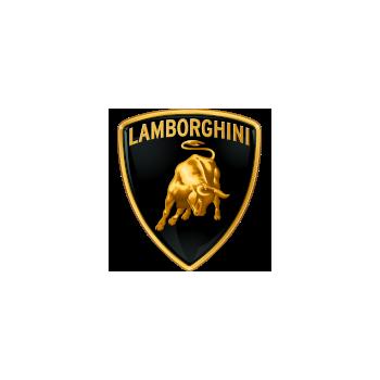 Lamborghini electronic boxes