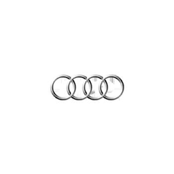 Audi engine control units