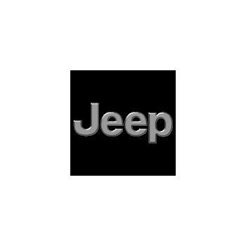 Jeep engine control units