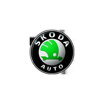 Skoda engine control units