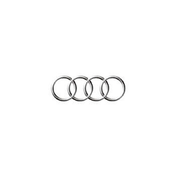 Audi ABS blocks